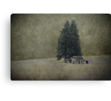 Cabin Under the Tree Canvas Print