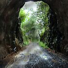 Boolboonda Tunnel by Donuts