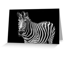 Zebra with a mohawk  Greeting Card