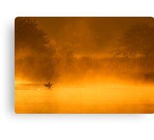 Cormorant Landing on Golden Pond Canvas Print