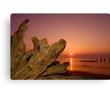 Driftwood and Rising Sun Canvas Print