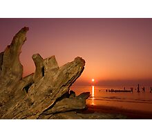 Driftwood and Rising Sun Photographic Print