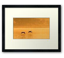 Cormorants Taking Flight Framed Print