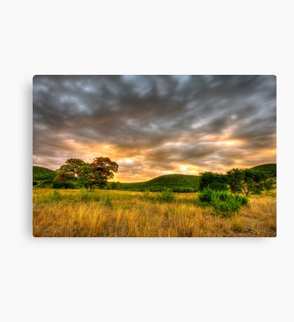 Texas Hill Country Ranch HDR Canvas Print