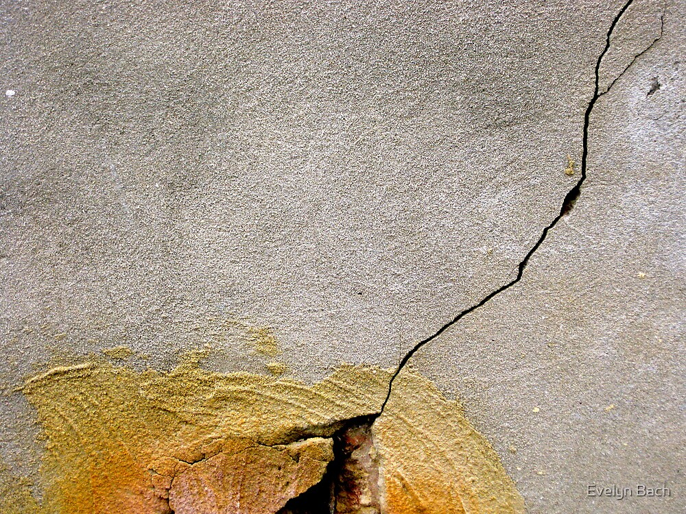 11/4 a crack, a crack in everything by Evelyn Bach