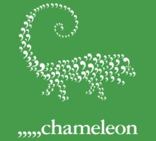 Comma Chameleon Kids Clothes