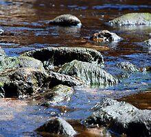 River Rocks by Xiaija