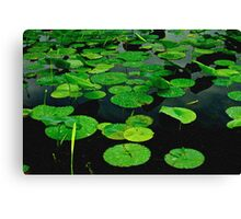 Lily Pads on Dark Water-Digital Painting Canvas Print