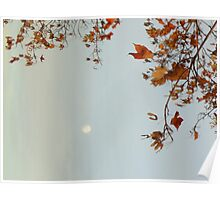 Autumn Moon Poster
