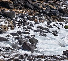 Rushing Back to the Sea 2 by Georden