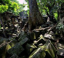 Ruins of Beng Mealea temple, Cambodia by Michael Treloar