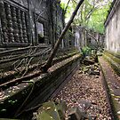Beng Mealea temple, Cambodia by Michael Treloar