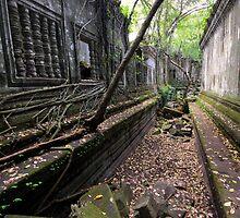 Beng Mealea temple, Cambodia by Michael Treloar