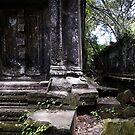 Forgotten Door, Cambodia by Michael Treloar