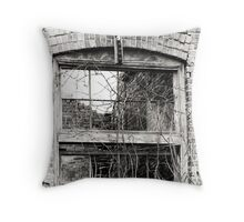 window with no view Throw Pillow