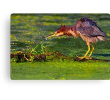 Sling that Fish - Digital Oil Canvas Print