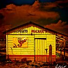 Beer Shack in Tampico by Paul Wolf