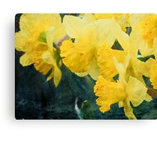 With Bobbing Yellow Heads Canvas Print