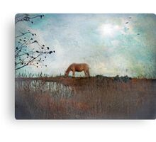 Imagine Your Dream Becoming Reality Canvas Print