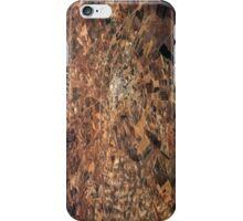 Arid Plains iPhone Case/Skin