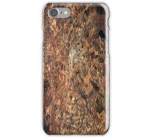 Arid Plains iPhone Case/Skin