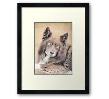 Wolf Eyes Framed Print