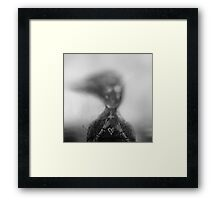 A FAIR DREAM GONE MAD Framed Print