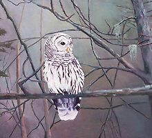 Adirondack Barred Owl by H Frasier