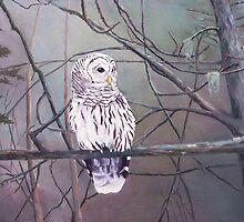 Adirondack Barred Owl by H Frasier
