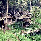 Thailand Tree Huts  by jevep