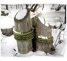 Posts In Snow Poster