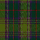 02009 Crantock Clan/Family Tartan Fabric Print Iphone Case by Detnecs2013