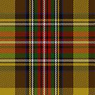 02012 Cree Clan/Family Tartan Fabric Print Iphone Case by Detnecs2013