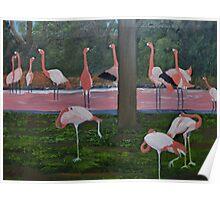 Flock of Flimingos Poster