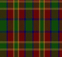 02026 Cub Scouts of America Tartan Fabric Print Iphone Case by Detnecs2013