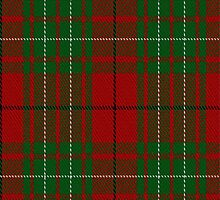 02027 Cumming #2 Clan/Family Tartan Fabric Print Iphone Case by Detnecs2013