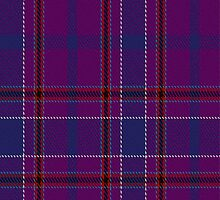 02039 Custer Tartan Fabric Print Iphone Case by Detnecs2013