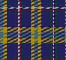 02043 Yorkshire County Cricket Club Tartan Fabric Print Iphone Case by Detnecs2013