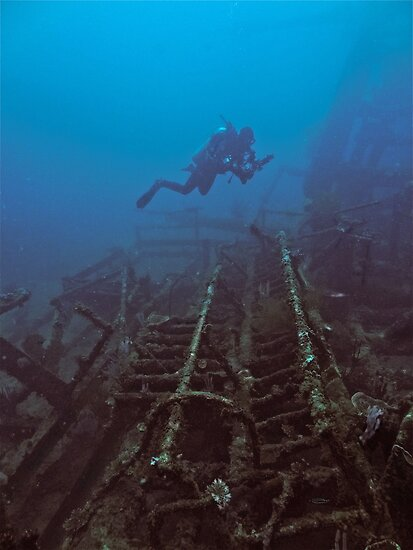 WRECKAGE DIVER by NICK COBURN PHILLIPS