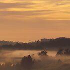 Soft Sunrise by Liz Worth