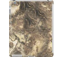 Marble Art iPad Case/Skin