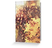 Spirit of the Beehive Greeting Card