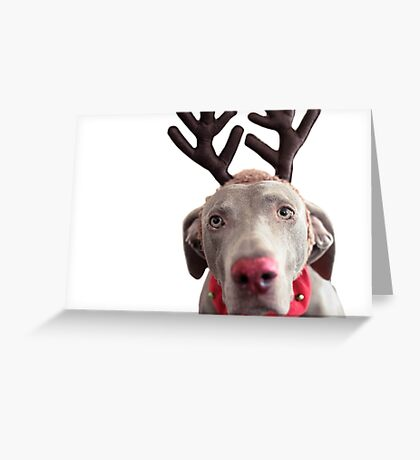 Rudolph the Red Nosed Reindeer? Greeting Card