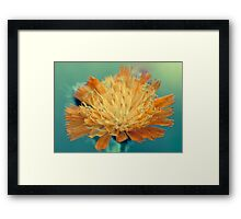 Mary Gold Framed Print