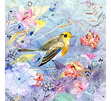 bird and flowers Photographic Print