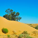 Dunes of Perry by peasticks