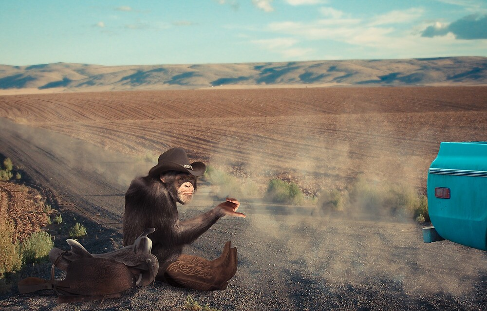 Hitchin' to the next Rodeo by Randy Turnbow