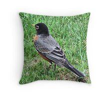 Wary Throw Pillow