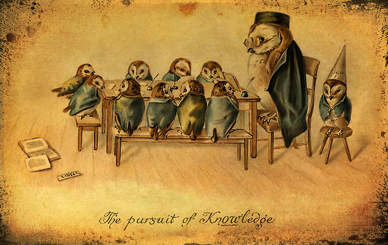 The persuit of Knowledge by © Kira Bodensted