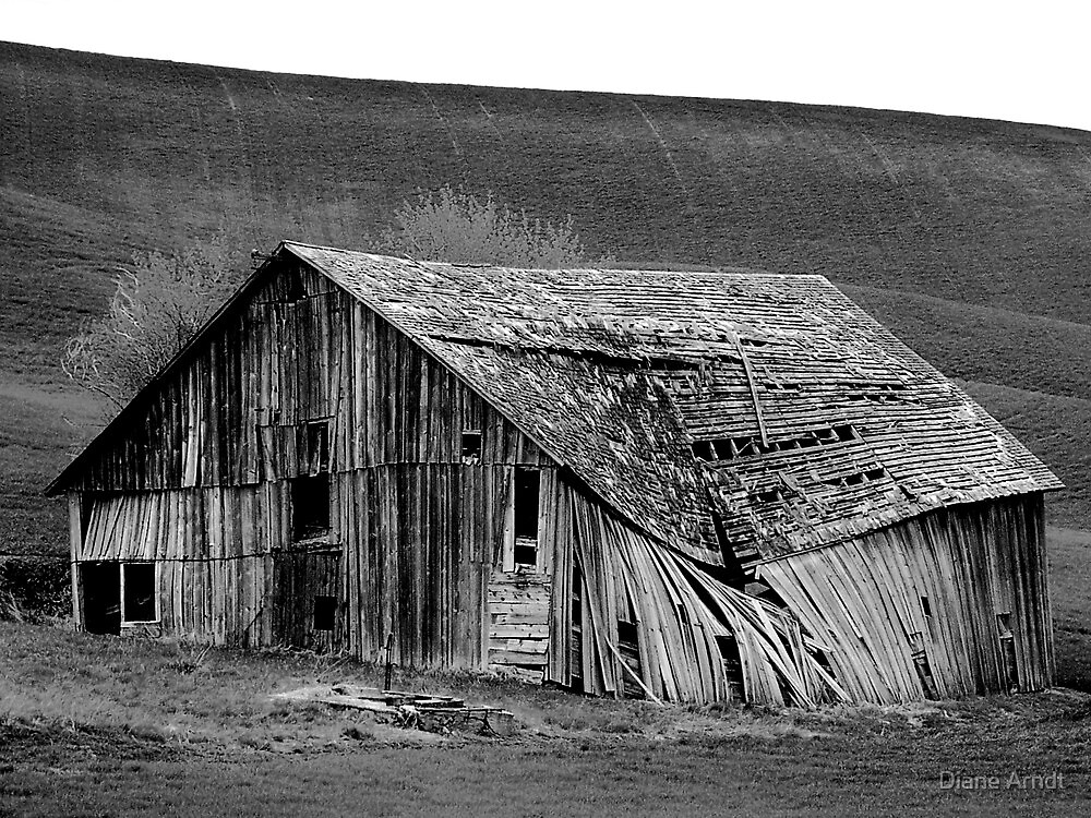 Abandoned In Idaho by Diane Arndt